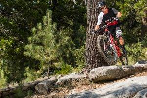 vail mountain bike shop